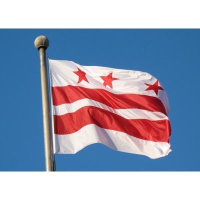 https://rachelfordelegate.org/wp-content/uploads/Mr-tin-dc-flag-smaller-400.jpg